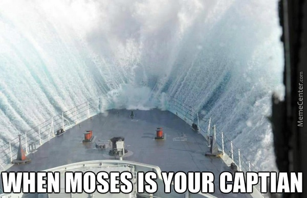 parting the seas cruise ship meme